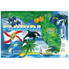 10 in x 14 in State & Regional Printed Placemats 1000 ct.