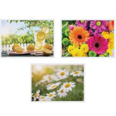 10 in x 14 in Summer Multipack Paper Placemats 1000 ct.