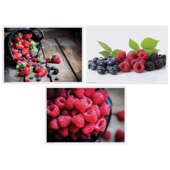 10 in x 14 in Berry Delight Multipack Paper Placemats 1000 ct.