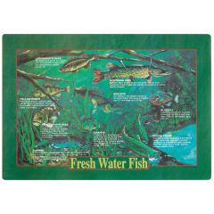 10 in x 14 in Fish Printed Placemats 1000 ct.