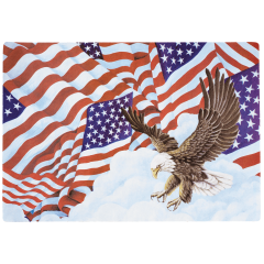 10 in x 14 in Patriotic Paper Placemats 1000 ct.